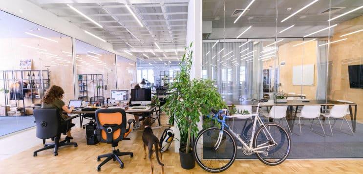 офис в коуъркинг софия